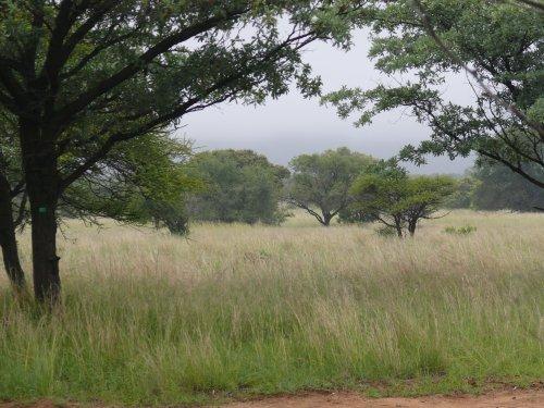 Vacant Land, For sale, DR17, Just outside Bela Bela, Listing ID 1020, Bela Bela , SA, Limpopo, South Africa,