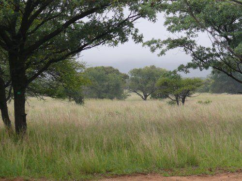 Vacant Land, For sale, DR44, DR44 Highlands, Listing ID 1021, Bela Bela, SA, Limpopo, South Africa,